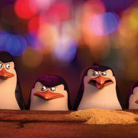 Pingwiny z Madagaskaru- Konkurs!